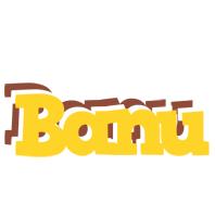 Banu hotcup logo