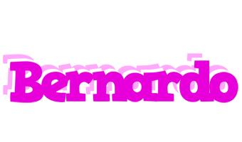 Bernardo rumba logo