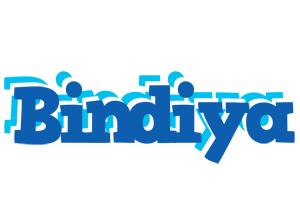 Bindiya business logo