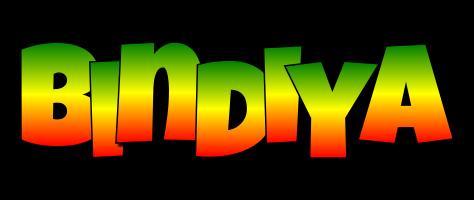 Bindiya mango logo