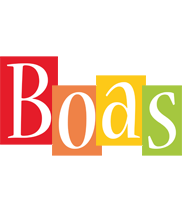 Boas colors logo