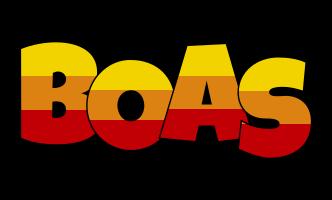 Boas jungle logo