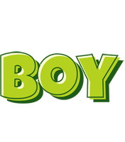 Boy summer logo