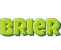 Brier summer logo