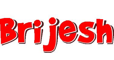 Brijesh basket logo