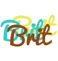 Brit cupcake logo