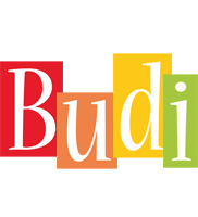 Budi colors logo