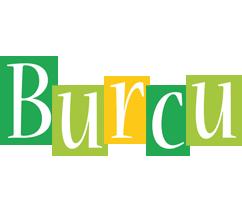 Burcu lemonade logo