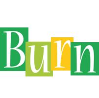 Burn lemonade logo