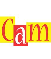 Cam errors logo