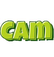 Cam summer logo