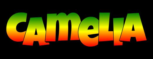 Camelia mango logo