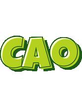 Cao summer logo