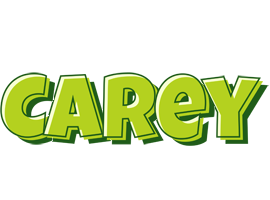 Carey summer logo