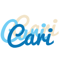 Cari breeze logo