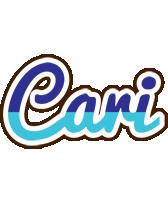 Cari raining logo