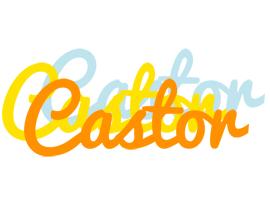 Castor energy logo