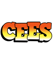 Cees sunset logo