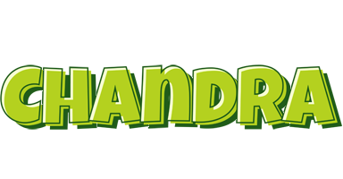 Chandra summer logo