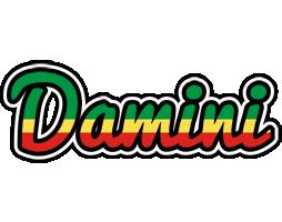 Damini african logo