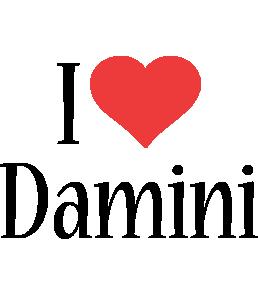Damini i-love logo