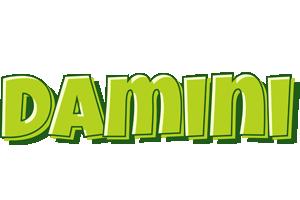 Damini summer logo