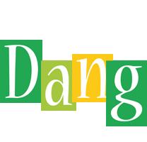 Dang lemonade logo