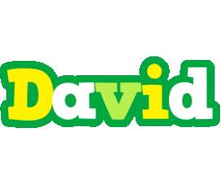 David soccer logo