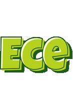 Ece summer logo