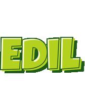 Edil summer logo
