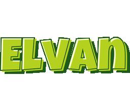 Elvan summer logo