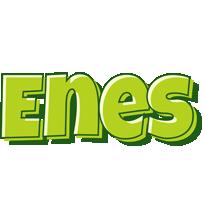 Enes summer logo