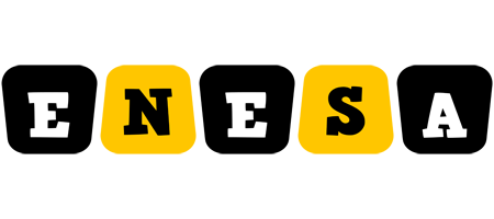 Enesa boots logo