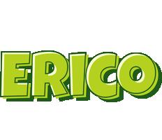 Erico summer logo