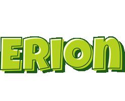 Erion summer logo