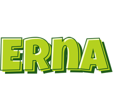 Erna summer logo
