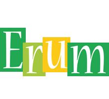 Erum lemonade logo
