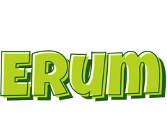 Erum summer logo
