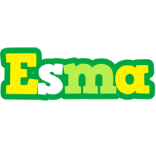 Esma soccer logo