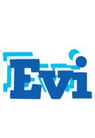 Evi business logo