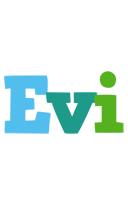 Evi rainbows logo