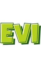 Evi summer logo