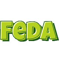 Feda summer logo