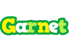 Garnet soccer logo