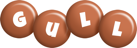 Gull candy-brown logo