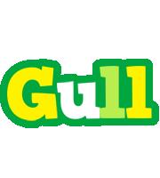 Gull soccer logo