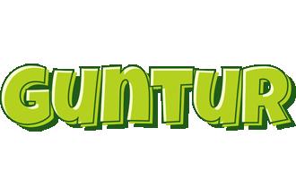 Guntur summer logo