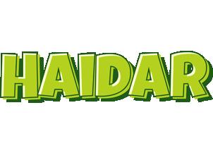 Haidar summer logo