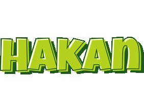 Hakan summer logo