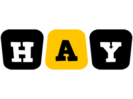 Hay boots logo